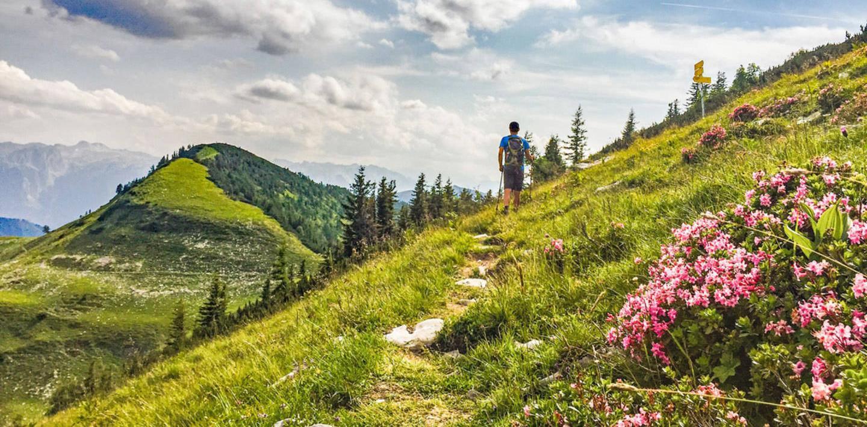 Almwandern im Salzkammergut - Wolfgangsee