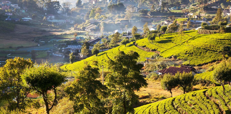 Sri Lanka aktiv: Tropisches Wanderparadies