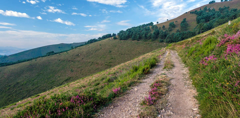 Pilgerwandern auf dem Camino Primitivo von Oviedo nach Santiago de Compostela