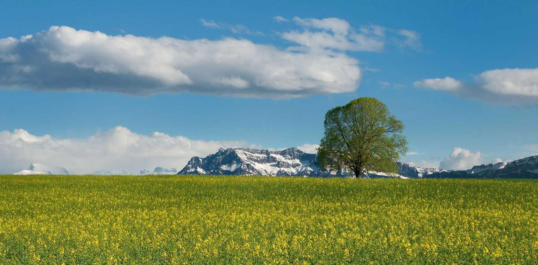 Traumwanderungen rund um Engelberg in der Schweiz