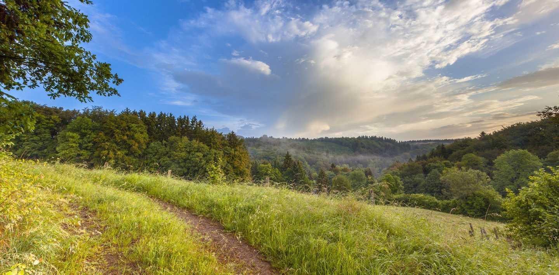 Wandern auf dem Eifelsteig - Kloster Steinfeld nach Daun