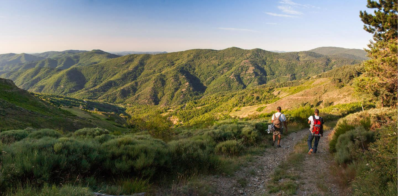 Wandern in Frankreich: Weites Land, tiefe Schluchten: Auvergne und Cevennen