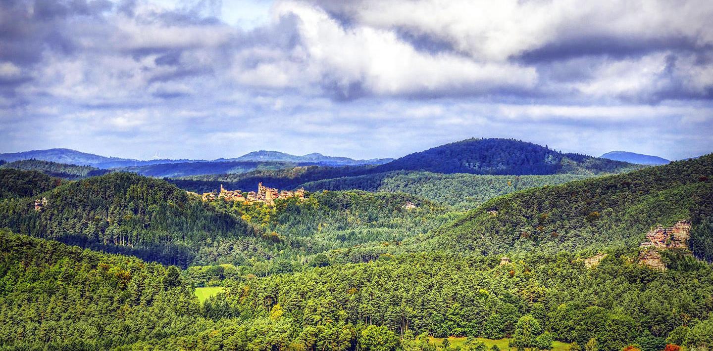 Wandern auf dem Pfälzer Waldpfad