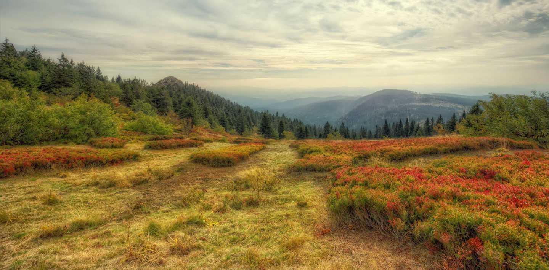 Wandern auf dem Goldsteig von Oberviechtach zum Großen Arber