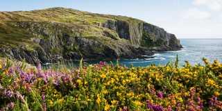 Wandern in Irland: Wanderreisen im Land der Kelten