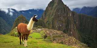 Wandern in Peru - Machu Picchu und den legänderen Inka-Trail entdecken