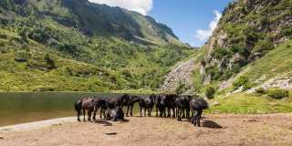 Allgeimeine Infos zu den Pyrenäen