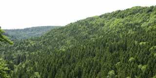 Wandern im Südschwarzwald