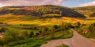 Wandern im Burgund: Vollmundiger Wein und Historie