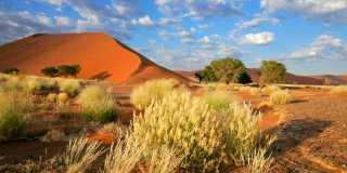 Wandern in Namibia - die weiten Ebenen Namibias erleben