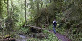 Wandern im Schwarzwald - Wanderurlaub individuell oder als Gruppenwanderung