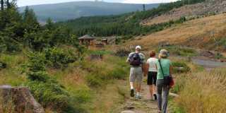 Wandern im Harz - Wanderurlaub individuell oder geführt