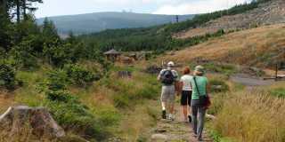 Wandern im Harz