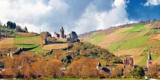 Wandern auf dem Rhein-Burgen-Weg