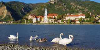 Wandern in der Wachau: Erholung für Körper und Seele