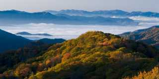 Wandern auf dem Appalachian Trail
