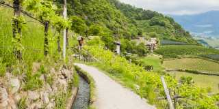 Vinschgau: Panoramawandern ohne Gepäck - individuell