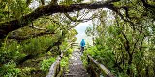 Wandern auf La Gomera - Aktiv & nah dran