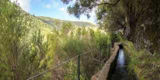 Wanderreise vom Madeira: Geführte Wanderung - Levadas, Lorbeer & Lavafelsenbis zu der Hochebene im Westen der Blumeninsel Madeira
