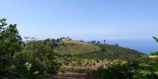Der wilde Westen - Lorbeerwald und Hochebene - wandern auf Madeira