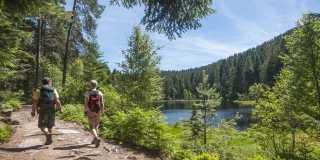 Schwarzwald: Individuell wandern auf dem Westweg von Pforzheim zur Alexanderschanze ohne Gepäck