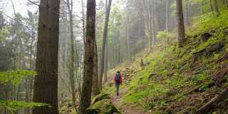 Schwarzwald: Individuell wandern auf dem Westweg vom Titisee nach Basel ohne Gepäck