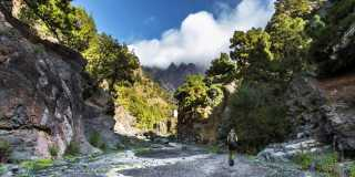 Geführte Wanderreise: Die grüne Perle der Kanaren – zum Jahreswechsel nach La Palma