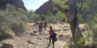 Wandern auf dem Larapinta-Trail in Australien