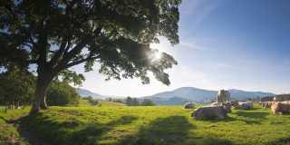 Wandern im Lake District Nastionalpark - England