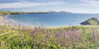 Wandern in Wales - Südengland: Klippen und Küste