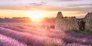 Provence: Individuell wandern - die schönsten Dörfer im Luberon