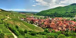 Wandern - Weinberge und Vogesengipfel - liebliches Elsass